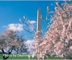 Washington DC Student Group Tours with Destinations Unlimited